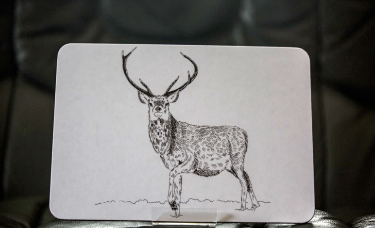 Red Stag Placemats set of 4