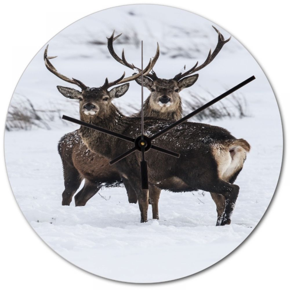 red stag 10 clock.jpg