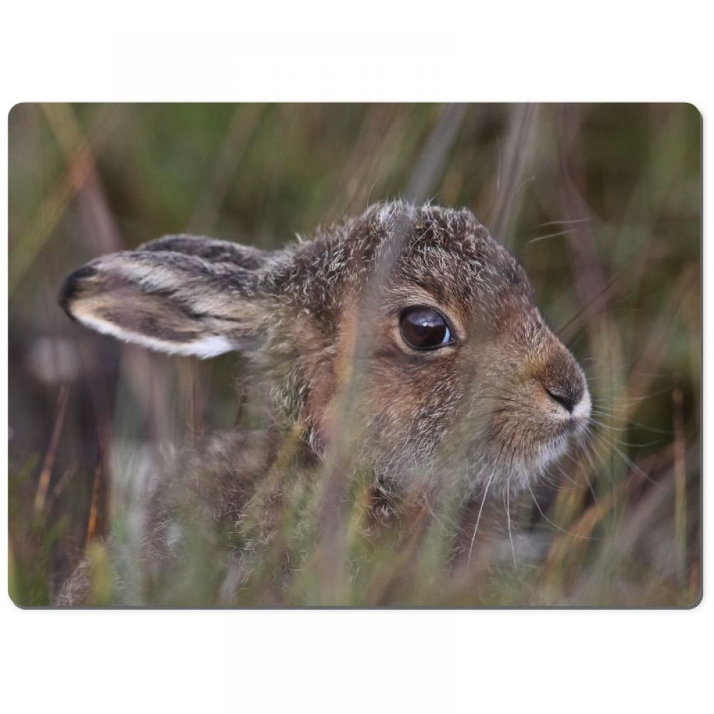 Leveret 2 chopping board.jpg