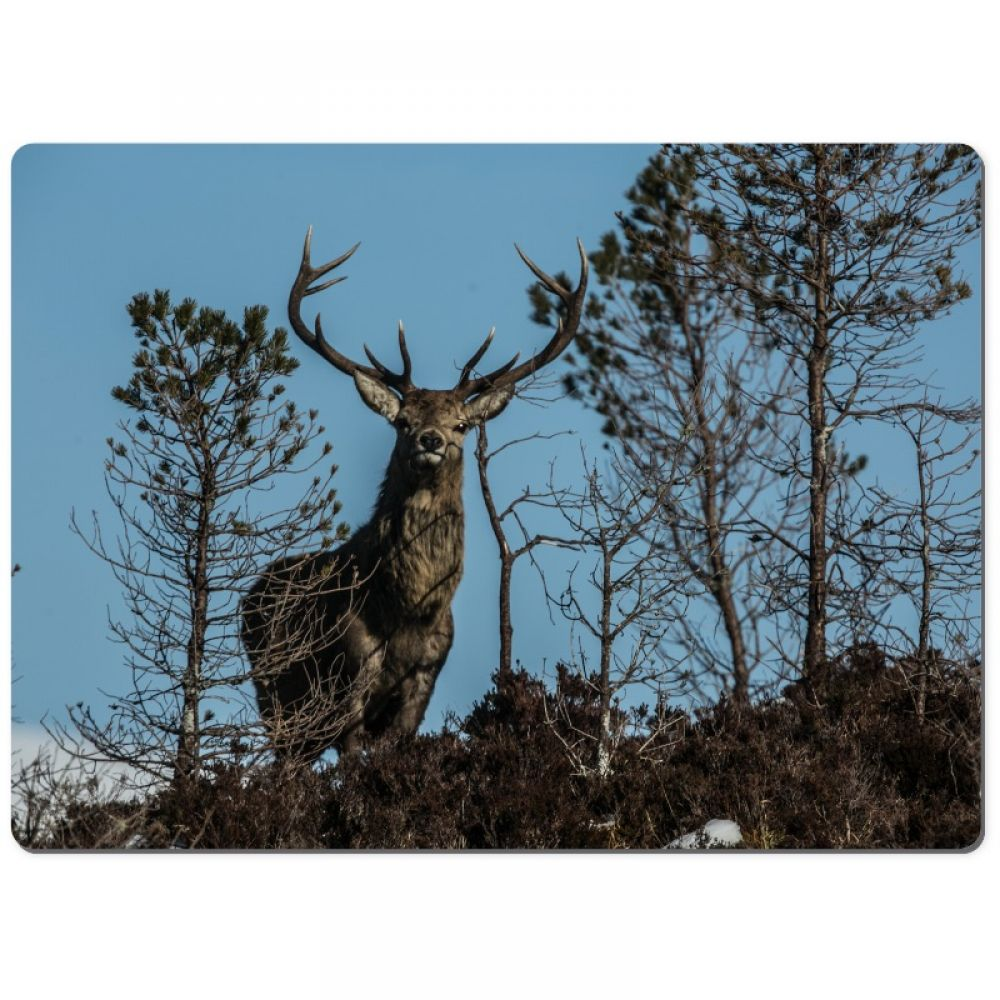 Red stag 33 chopping board.jpg