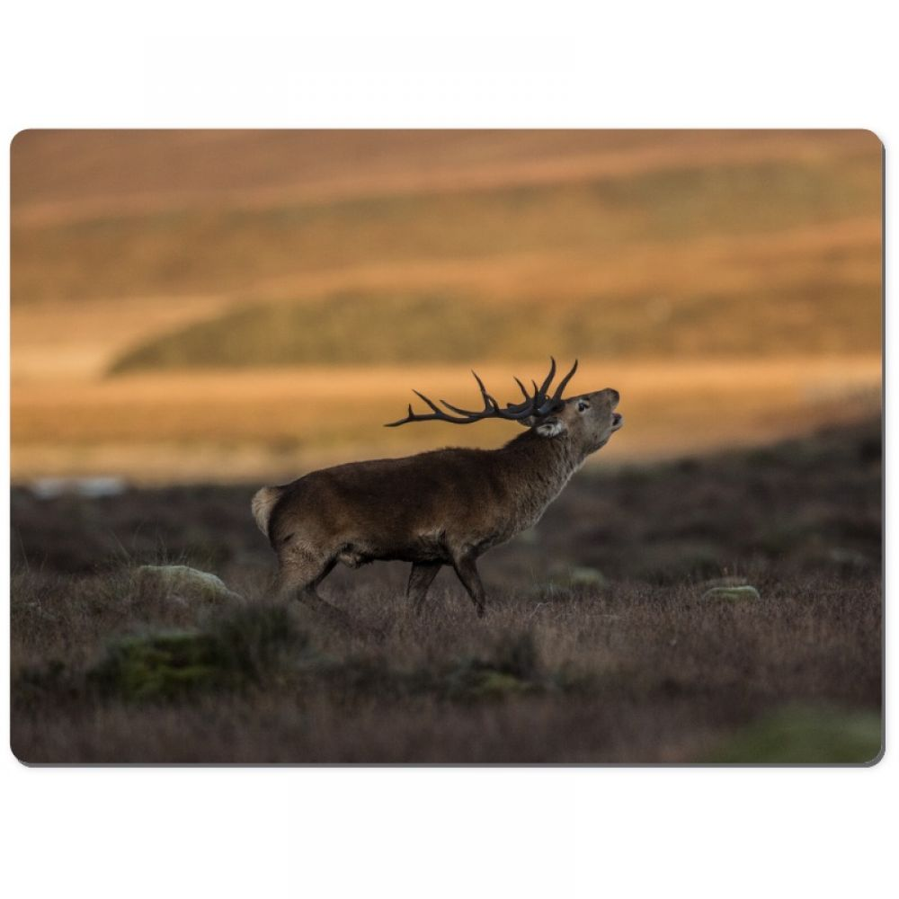 Red stag 5 chopping board.jpg