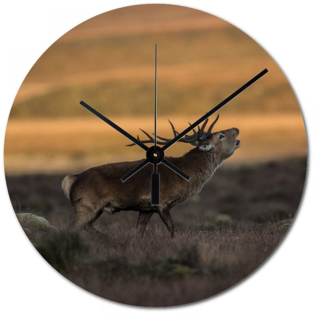 Red stag 5 20cm clock.jpg